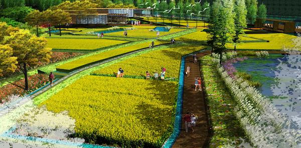 湿地小镇农业区意向图.png