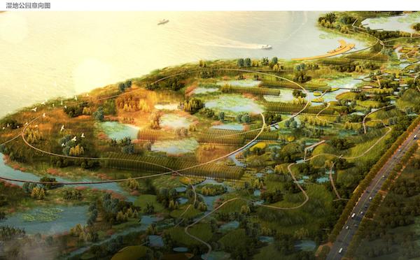 生态恢复区鸟瞰图1.png