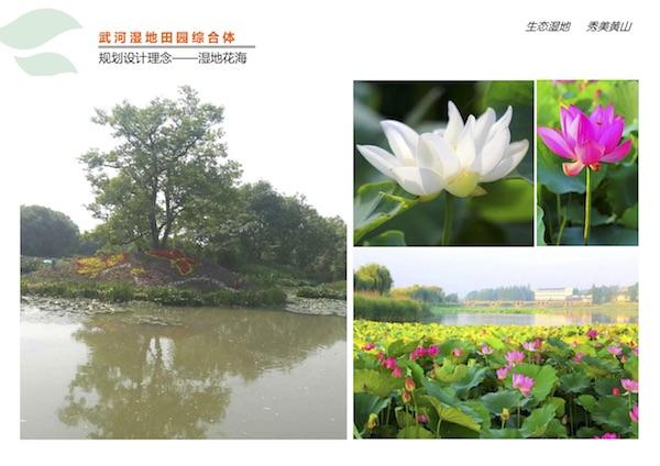 武河湿地田园综合体项目2.jpg